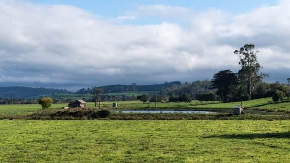 fields, farm sheds, and pond near Sheffield in Tasmania