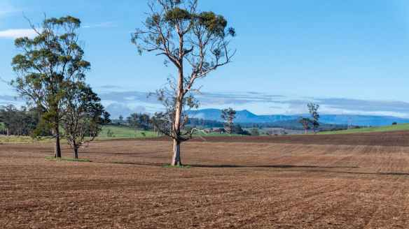 late summer fields near Sheffield Tasmania