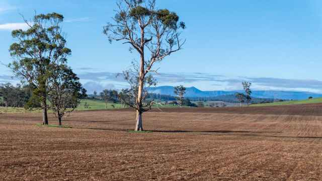 late summer fields near Sheffield Tasmania