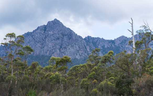 Mount Roland behind the Gowrie Park tent site