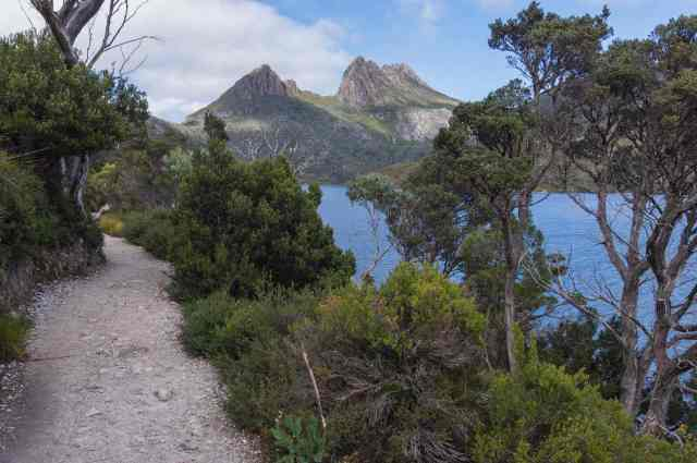 trail on east side of Dove Lake