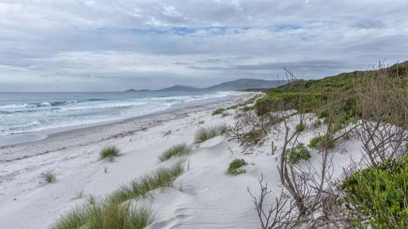 beach view south of Bicheno on Tasmania's east coast
