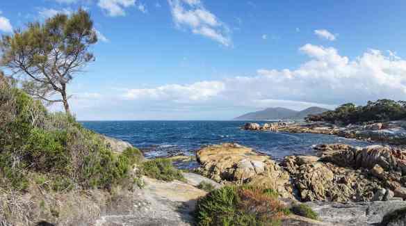 Bicheno's rocky shoreline