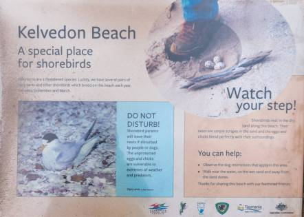 Kelvedon Beach sign - Watch Your Step!