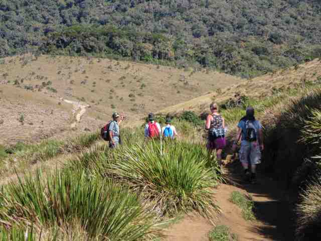 down to the foot of Baker's Falls in Horton Plains Park