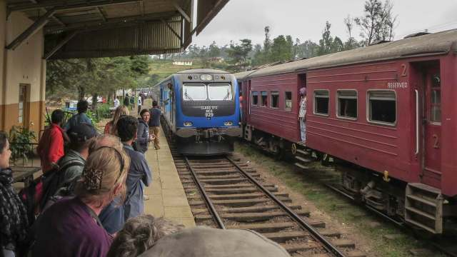 our train finally arrives at Ambewela