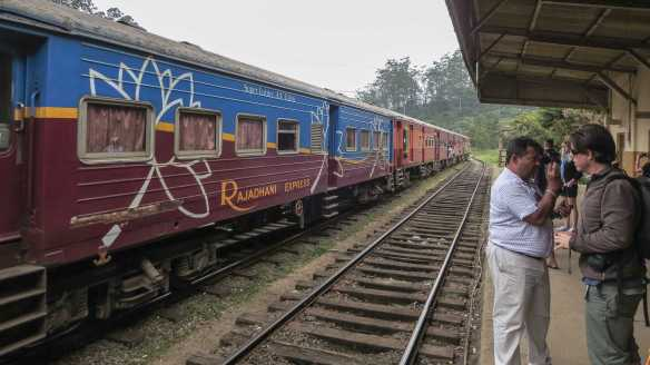 The Rajadhani Express pulls in to Ambewela