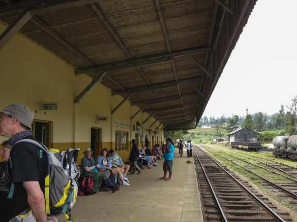 Ambewela Train Station/Horton Plains National Park