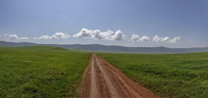 down an Ngorongoro road to see the buffalo