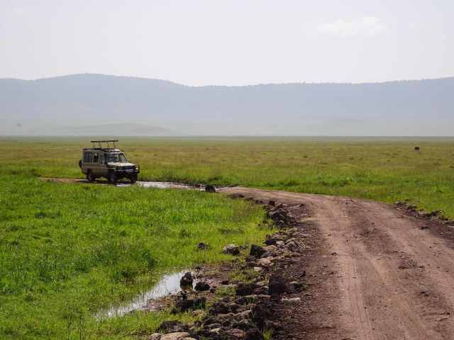 on the move on one of Ngorongoro Crater's many jeep tracks
