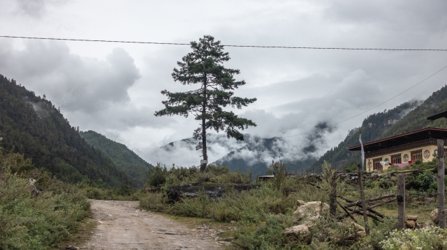 the road to Shana from Drugyel Dzong